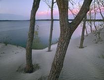Lake Ontario, Sandbanks Provincial Park, Ontario by Danita Delimont