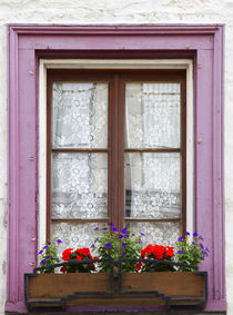 Canada, Quebec, Quebec City, Old Town window with flowers. by Danita Delimont