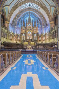 Notre Dame Basilica by Danita Delimont