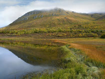 Ogilvie Mountains and tundra tarn in autumn, Yukon Territory, Canada. von Danita Delimont
