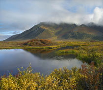 Ogilvie Mountains tower over a lake, Yukon Territory, Canada. von Danita Delimont