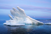 Melting Sea Ice, Repulse Bay, Nunavut Territory, Canada by Danita Delimont