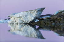 Melting Iceberg, Repulse Bay, Nunavut Territory, Canada by Danita Delimont