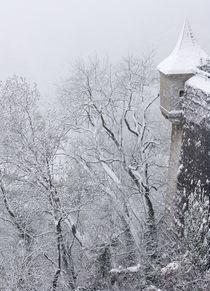 Austria, Salzburg by Danita Delimont