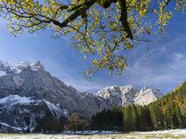 Eng Valley during fall, Karwendel mountain range, Austria by Danita Delimont