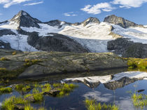 Head of valley Obersulzbachtal in Nationalpark Hohe Tauern by Danita Delimont