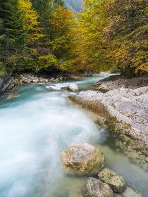 Creek Rissbach, Karwendel, Austria by Danita Delimont