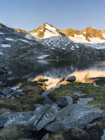 Reichenspitz mountain range, NP Hohe Tauern,Austria by Danita Delimont
