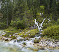 Waterfall in Karwendel valley, Austria by Danita Delimont