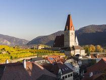 Weissenkirchen, Wachau, Austria von Danita Delimont