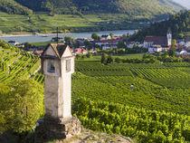 Village of Spitz, Wachau, Austria von Danita Delimont