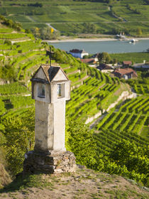 Village of Spitz, Wachau, Austria by Danita Delimont