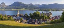 St. Wolfgang, Wolfgangsee lake, Flachgau, Upper Austria, Austria by Danita Delimont