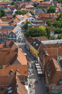 Overlook over Ribe, Denmark's oldest surviving city, Jutland, Denmark by Danita Delimont
