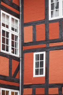 Denmark, Zealand, Copenhagen, half-timbered building detail by Danita Delimont