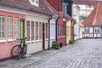 Denmark, Funen, Odense, old town street von Danita Delimont