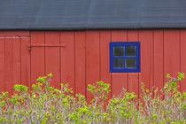 Denmark, Jutland, Gamle Skagen, Old Skagen, red house detail von Danita Delimont