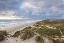 Denmark, Jutland, Danish Riviera, Hvide Sande, coastal dunes, dusk von Danita Delimont
