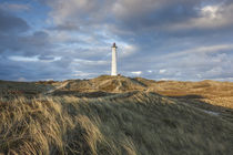 Denmark, Jutland, Danish Riviera, Hvide Sande, Lyngvig Fyr L... by Danita Delimont