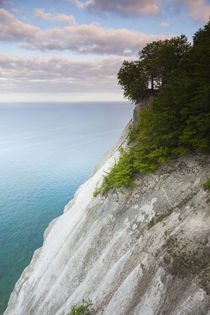 Denmark, Mon, Mons Klimt, 130 meter-highchalk cliffs from above von Danita Delimont