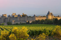 Dawn overlooking the medieval village of Carcassonne, Langue... von Danita Delimont