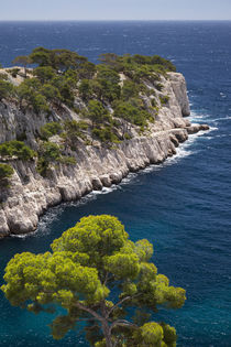 Rocky point in the Calanques near Cassis, Bouches-du-Rhone, ... by Danita Delimont