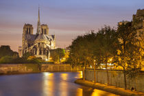 Cathedral Notre Dame along River Seine, Paris, France. by Danita Delimont