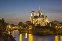 Cathedral Notre Dame along the banks of River Seine, Paris, France by Danita Delimont