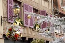 France, Alsace, Colmar by Danita Delimont
