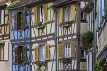 House, Colmar, Alsace, France by Danita Delimont
