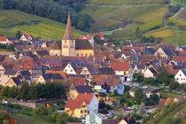 Niedermorschwihr, Alsace, France by Danita Delimont
