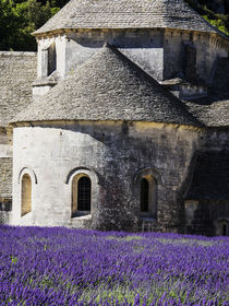 Seananque Abbey with Lavender in full bloom von Danita Delimont