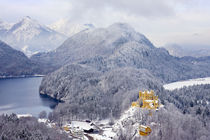 Hohenschwangau Castle in the Bavarian Mountains of Germany von Danita Delimont