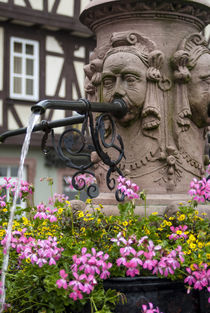 Europe, Germany, Miltenberg, fountain detail von Danita Delimont