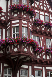 Europe, Germany, Miltenberg, half-timbered buildings von Danita Delimont