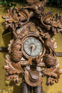 Cuckoo clock, Rothenburg, Germany von Danita Delimont