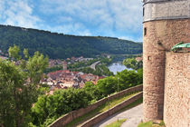 Wertheim, Germany Wertheim Castle overlooks the Main river valley von Danita Delimont