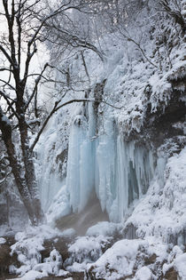 The frozen Schleierfaelle in Bavaria, Germany by Danita Delimont