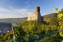 Landshut castle above Mosel River, Bernkastel-Kues, Rhineland-Pa von Danita Delimont
