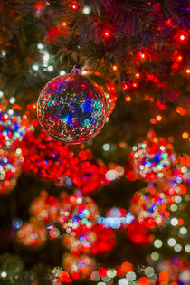Germany, Berlin, Potsdamer Platz, Christmas Tree detail, evening by Danita Delimont