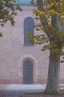 Germany, Rheinland-Pfalz, Speyer, Domgarten, cathedral park,... von Danita Delimont