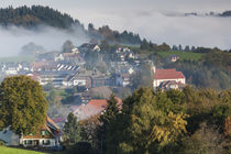 Germany, Baden-Wurttemburg, Black Forest, Horben, town view ... by Danita Delimont