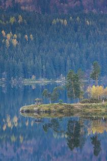 Germany, Baden-Wurttemburg, Black Forest, Schluchsee, Schluc... by Danita Delimont