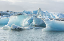 Jokulsarlon glaciers and icebergs on lake lagoon on edge of ... by Danita Delimont