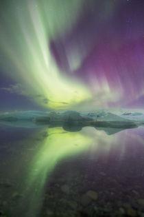 Iceland, Jokulsarlon by Danita Delimont