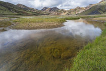Stream running through a meadow in Landmannalaugar, Iceland by Danita Delimont