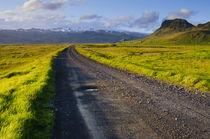 Near Skogafoss. von Danita Delimont