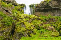 Seljalandsfoss. Gljufrabui waterfall. von Danita Delimont