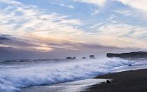 Coast of the North Atlantic near Vik y Myrdal, Iceland by Danita Delimont