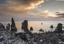 North Atllantic coast at Reykjanesviti, Iceland by Danita Delimont